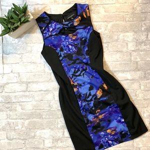 Cynthia Rowley purp/blue Sleeveless Dress Sz 8